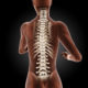 September is Spinal Cord Injury Awareness Month